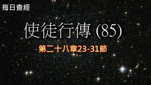 Read more about the article 使徒行傳(85)28:23-31