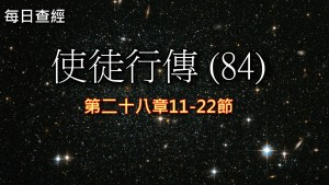 Read more about the article 使徒行傳(84)28:11-22